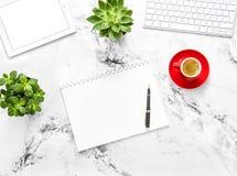 笔记本片剂个人计算机咖啡多汁植物舱内甲板位置 免版税库存照片
