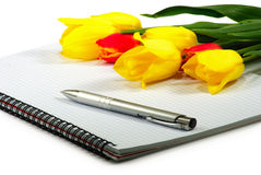 笔记本笔和花 库存图片