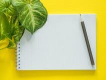 笔记的笔记薄,绿色植物在黄色桌面,平的位置,拷贝空间离开 免版税库存图片