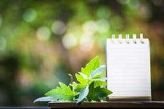 笔记的纸关于使用墙纸或背景的木头和bokeh背景 库存图片
