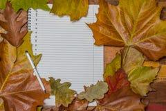 笔记薄和笔与秋叶 免版税库存图片