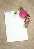 笔记薄和翠菊构成 库存照片