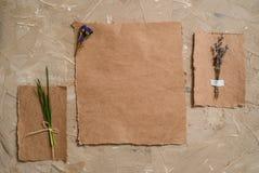 笔记薄是词条的一个笔记本 牛皮纸明信片 淡紫色花干草干燥标本集  在棕色古色古香的背景 图库摄影