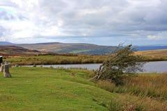 笔Fford gogh池塘,威尔士 免版税库存图片