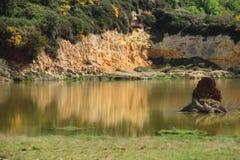 笤帚和硫磺岩石在湖 图库摄影