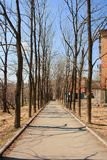符拉迪沃斯托克风景  免版税库存照片