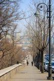 符拉迪沃斯托克风景  免版税库存图片