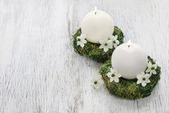 第一个圣餐的新鲜的春天装饰, 图库摄影