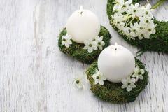 第一个圣餐的新鲜的春天装饰 库存图片