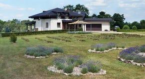 第一个淡紫色农场 库存照片