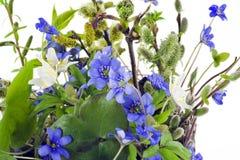 第一个花纵向春天森林 库存图片