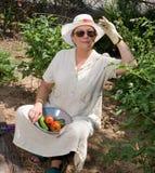 第一个蕃茄 免版税库存照片