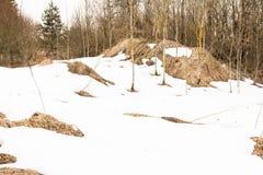 第一个被解冻的补丁,多云天春天在森林,从熔化雪下面您能看到干燥秋天草 图库摄影