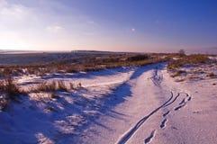 第一日冬天 在雪f小山的积雪的树  库存照片