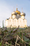 第一棵春天草在Novodevichy女修道院在莫斯科 图库摄影