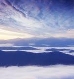 第一棵草高薄雾早晨山峰发出光线多雪的星期日 图库摄影