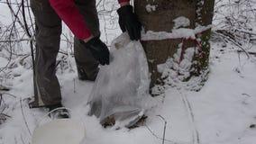 第一槭树树汁在降雪以后的春天在塑料大袋 股票视频