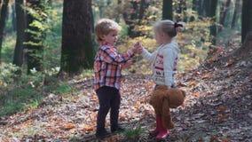 第一爱人 在森林孩子的孩子使用在森林秋天的森林女孩和男孩的,夏天 愉快的孩子 影视素材
