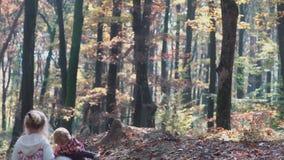 第一爱人 在森林孩子的孩子使用在森林秋天的森林女孩和男孩的,夏天 愉快的孩子 股票视频