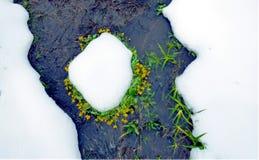 第一符号春天 库存图片