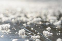 第一结冰在水坑 图库摄影