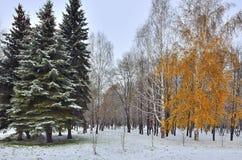 第一降雪在城市停放-见面秋天和冬天 免版税图库摄影