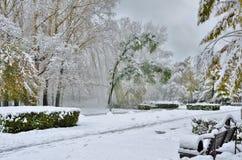 第一降雪在秋天城市公园 库存图片