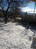 第一降雪2015年 库存图片