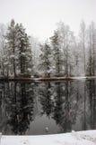 第一雪。 库存图片