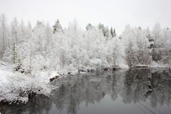 第一雪。 图库摄影