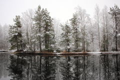 第一雪。 免版税库存照片