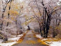 第一雪在城市公园 胡同 库存照片