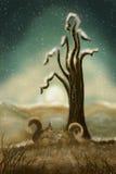 第一雪在夜间在魔术地产 免版税库存照片