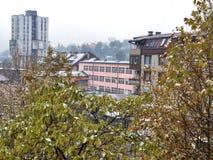 第一雪在我的镇里 库存照片