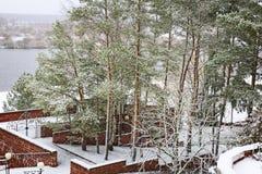 第一雪在早期的冬天在公园 库存图片