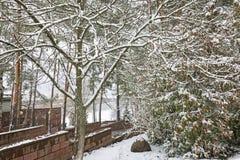 第一雪在早期的冬天在公园 免版税库存图片