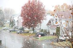 第一雪在蒙特利尔加拿大 免版税库存照片