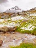 第一雪在阿尔卑斯旅游区域 有急流小河的新鲜的绿色草甸 阿尔卑斯山峰顶在背景中 免版税库存照片