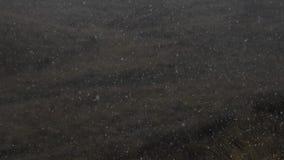第一雪的慢动作图片在秋天小山背景的  影视素材