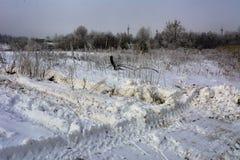 第一雪落 库存图片