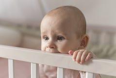 第一颗牙生长婴孩 图库摄影