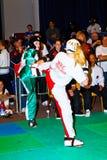 第三世界kickboxing的冠军2011年 免版税图库摄影