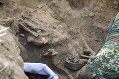 第二次世界大战的战士埋葬的挖掘  免版税库存图片