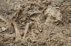 第二次世界大战的战士埋葬的挖掘  库存图片