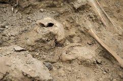 第二次世界大战的战士埋葬的挖掘  库存照片