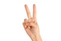 第二,和平 免版税库存照片