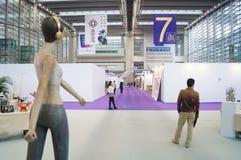 第十中国(深圳)国际文化产业公平在冬天工艺画展 免版税库存图片
