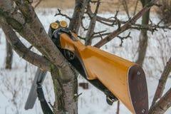 第十二口径的狩猎步枪 库存图片