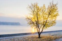 第聂伯河的堤防的秋天视图 免版税图库摄影