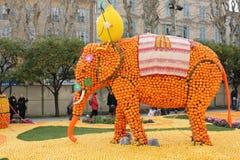 柠檬节日2013年 免版税库存照片